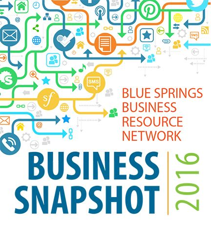 Business Snapshot 2016